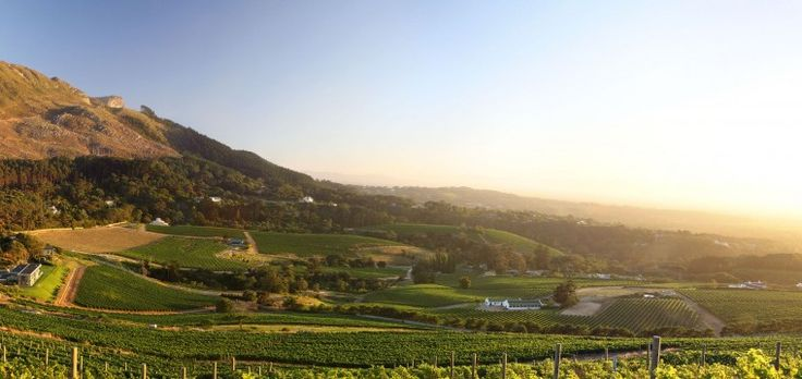 The secret to Constantia Glen's fine #wines lies in the sea, mountains and earth. Here's why: