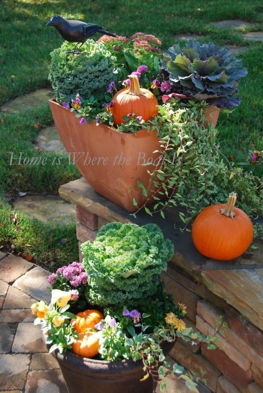 Fall patio pots