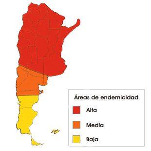 1.600.000 personas en Argentina están afectadas por el mal de chagas.