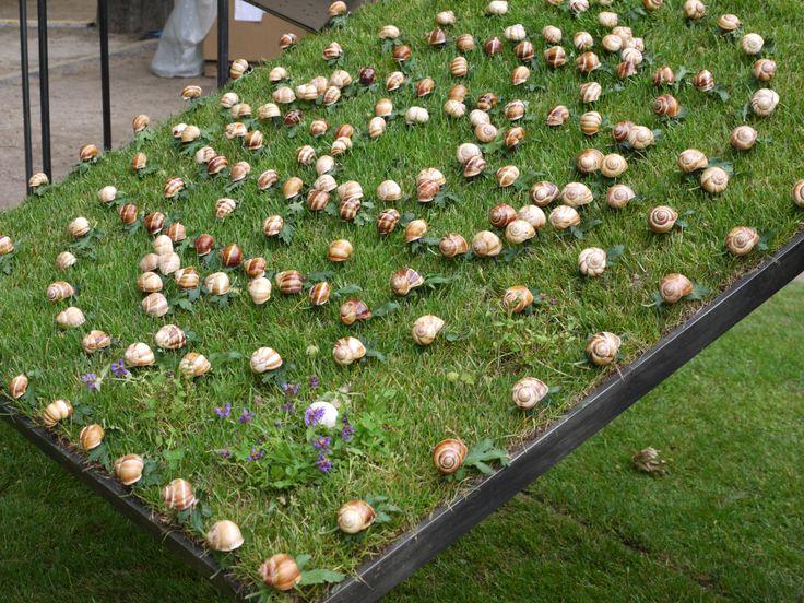 Les 29 meilleures images propos de jardins ph m res for Les jardin de catherine