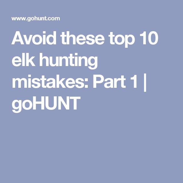 Avoid these top 10 elk hunting mistakes: Part 1 | goHUNT