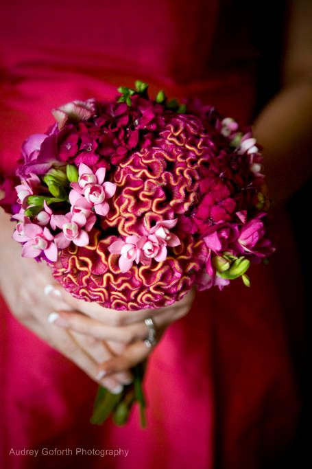 Tight clustered bridesmaids bouquet for Lioncrest Biltmore Estate wedding. Asheville wedding flowers; celosia, bouvardia and freesia. Done by Janet Frye AIFD