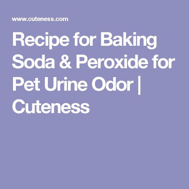 Recipe for Baking Soda & Peroxide for Pet Urine Odor | Cuteness