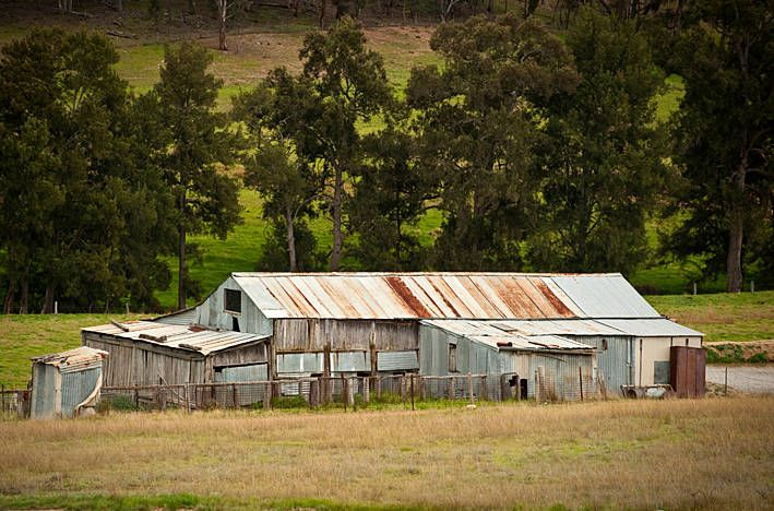 Shearing Shed, 'Clear Creek'