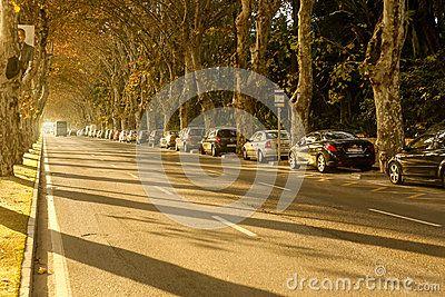 Beautiful sunny afternoon Andalucia Malaga Spain. Paseo de los Curas street.