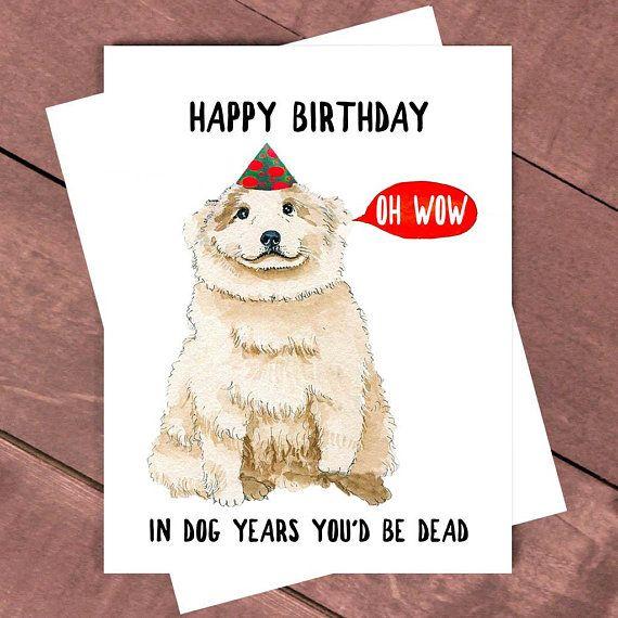 Funny Happy Dog And Grumpy Cat Birthday Card Zazzle Com Birthday Wishes Funny Funny Wishes Funny Birthday Cards
