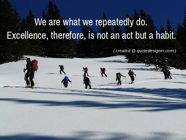 We are what we repeatedly do. Excellence, therefore, is not an act but a habit.