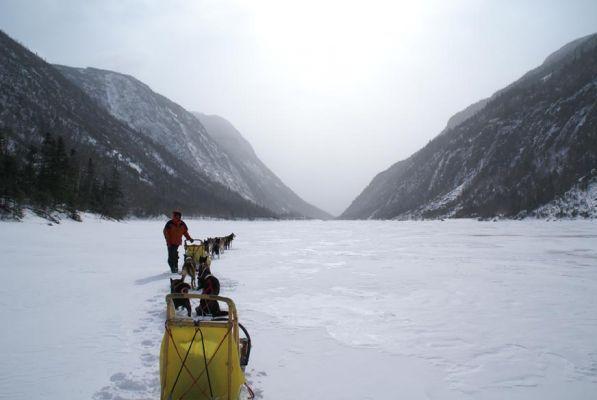 Montagne et arrière-pays en traîneau à chiens - Descente de Malbaie en 3 jours dans la Réserve mondiale de la Biosphère de Charlevoix