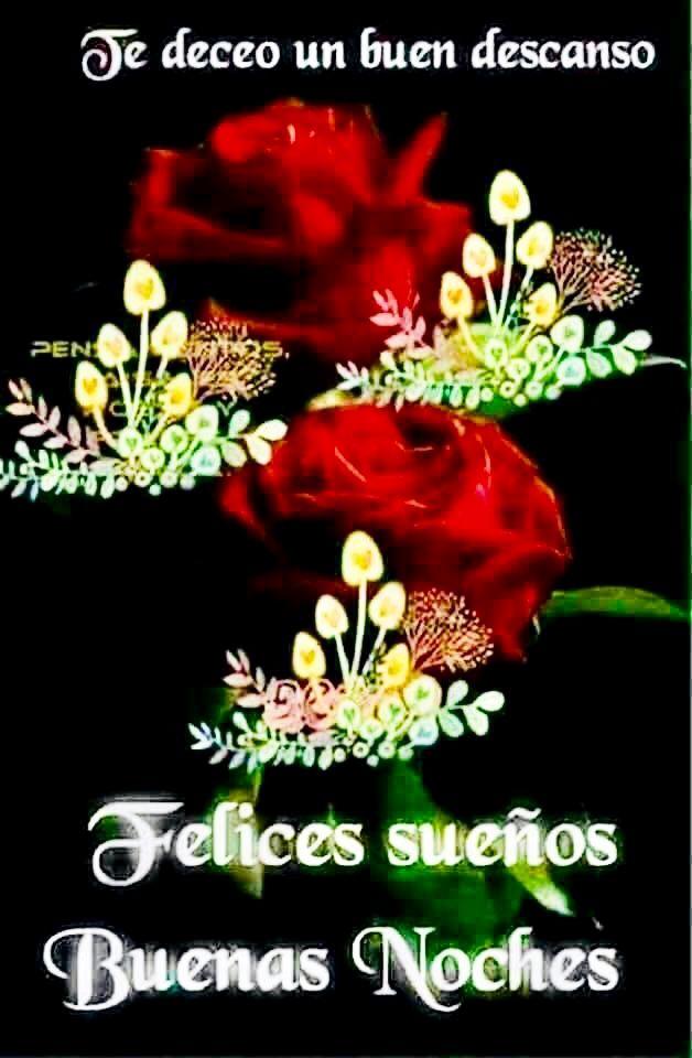 Pin By Silvia Vasquez On Buenas Noches Y Dulces Suenos Good Night Quotes Night Quotes Good Night