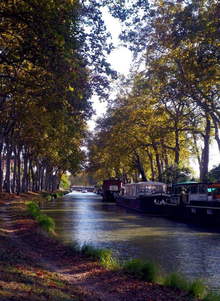 Retrouve sur Seety App les plus beaux parcours le long du Canal du Midi à Toulouse ➜ appsto.re/fr/D75G9.i