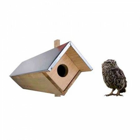 Caja nido para mochuelo                                                                                                                                                                                 Más
