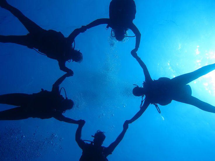 Dalış arkadaşlarınızla birlikte bir araya gelip keyifli zamanlar geçirebileceğiniz bir hobidir.  Çok kısa zamanda unutulmayacak paylaşımlar yapıp sualtının muhteşem dünyasına birlikte misafir olduğunuz bu kısa zamanda unutulmayacak dostluklarda edinirsiniz.  #Dalış #Sualtı #ŞişliSualtı #TüplüDalış #Scuba #DalışEğitimi #DalışKursu #Underwater