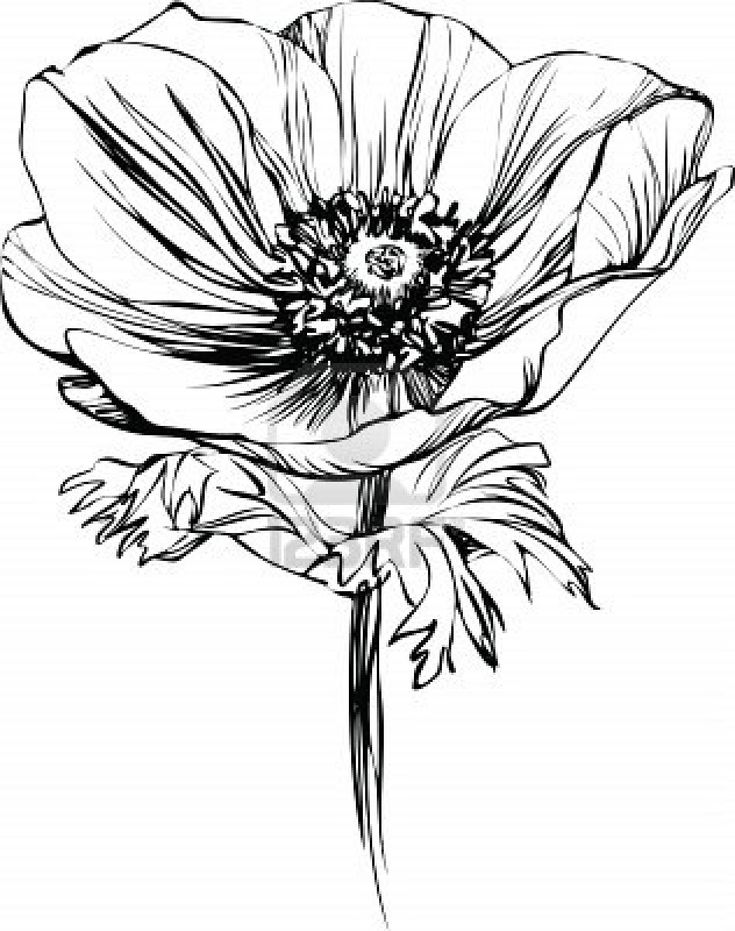 Kind of want this as a tattoo