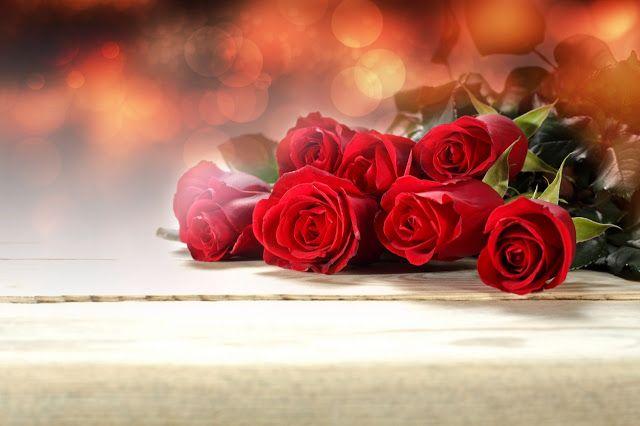 أجمل 40 خلفية عالية الدقة للورد الاحمر مداد الجليد Red Rose Bouquet Wedding Rose Flowers
