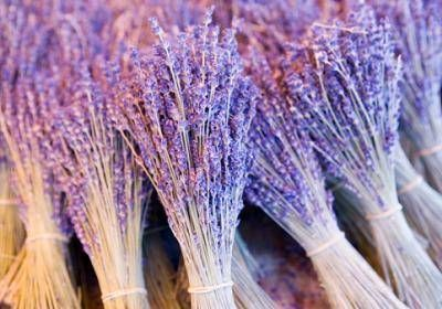 Lavender -manifest wishes ...burn lavender candle while setting intentions and speak them to the univere
