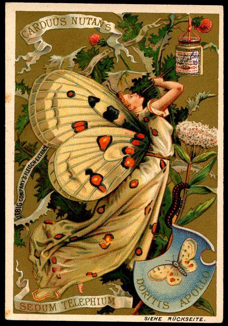 Liebig S265 Butterfly Girls 1 | Flickr - Photo Sharing!