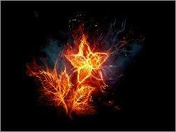 Kwiat, Ogień