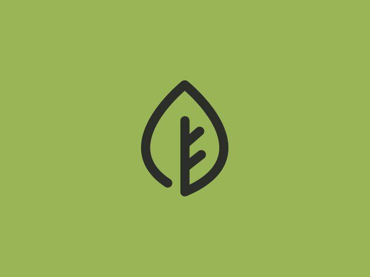 Water droplet/Leaf Logo