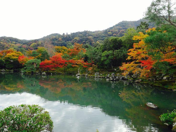 天龍寺 - Tenryuji Temple