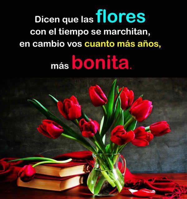 Flores y rosas bonitas poemas de amor frases con fotos for Las plantas mas bonitas