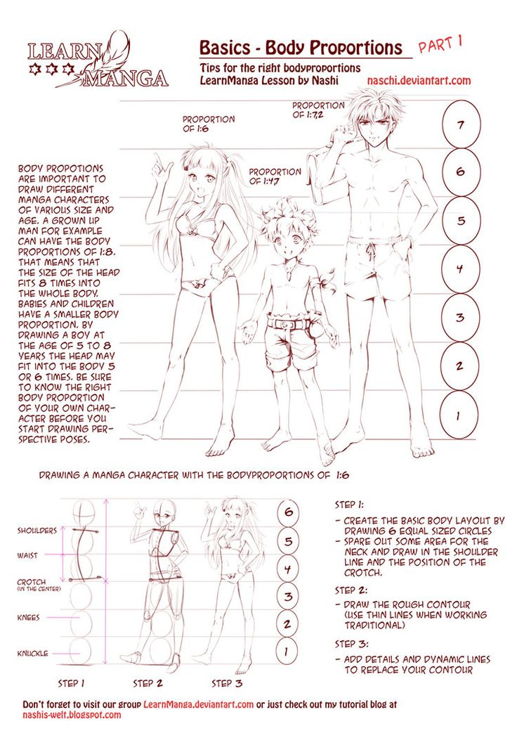 Learn Manga: body proportions by *Naschi on deviantART