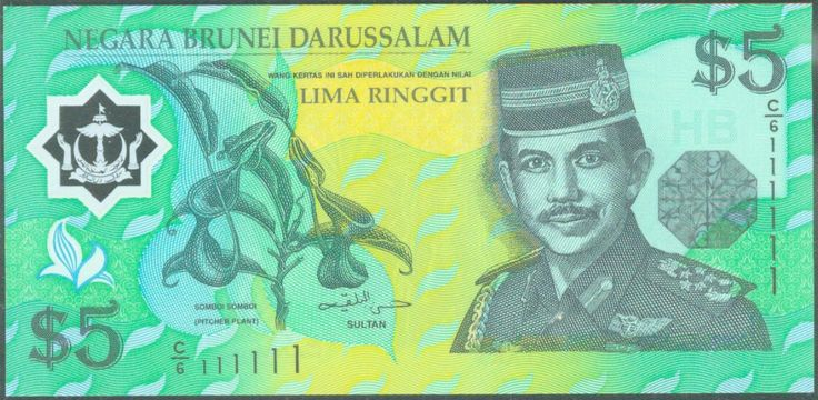 The image of B$5. #5 #Currency #BruneiSoutheast Asian, Asian Currency, Currency Brunei