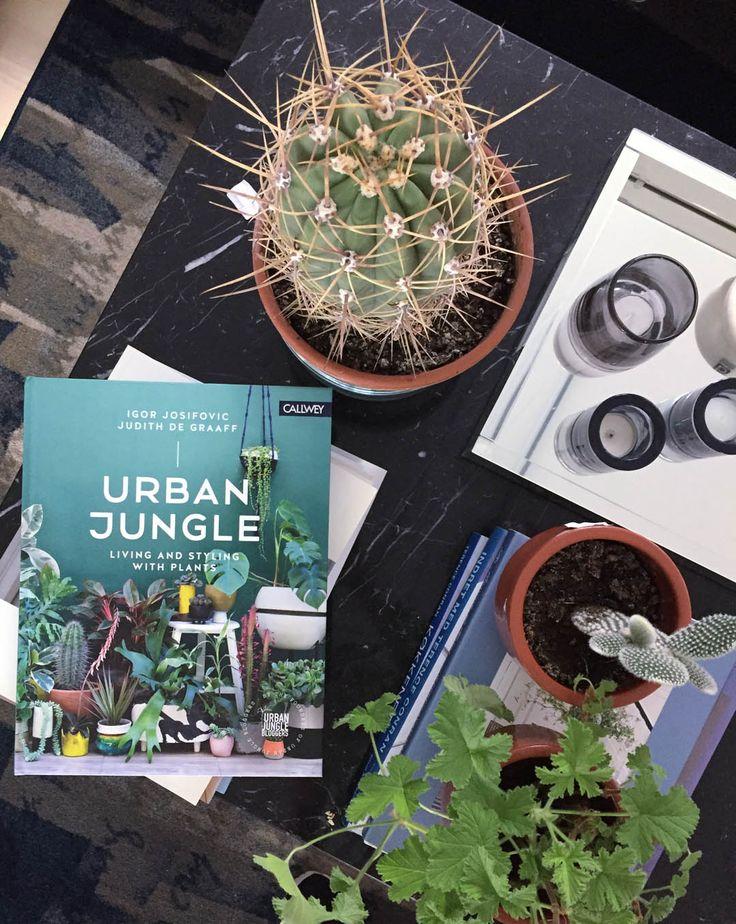 Urban Jungle Book on @bungalowfive