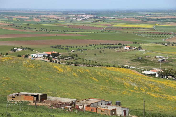 Fields - Aljustrel, Alentejo,Portugal