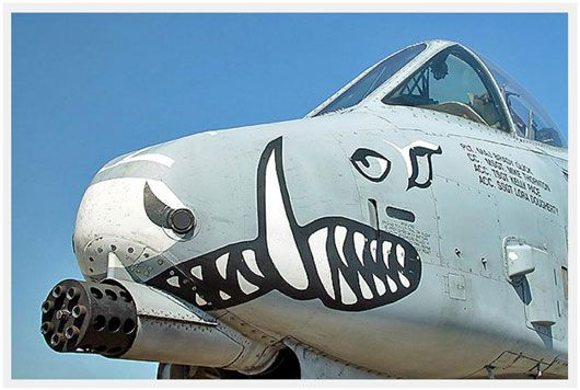 Sink Your Teeth Into The Many Faces Of The USAF A-10 Warthog! - blog - AirPigz