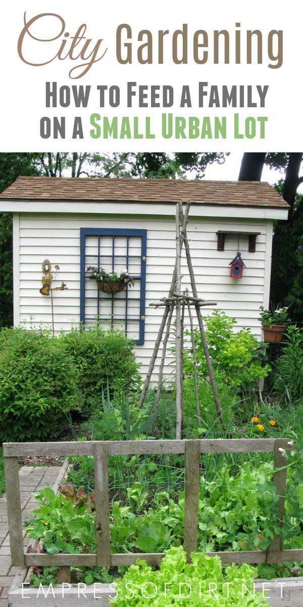 Feeding A Family With A Little City Garden Empress Of Dirt City Garden Urban Garden Home Vegetable Garden