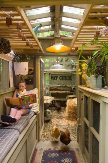 Living space inside coop