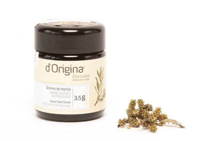 d'Origina, végétaux aromatiques de la forêt boréale du Bouclier Canadien.