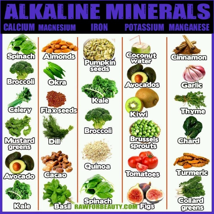117 best alkaline foods ph levels parasite herbal antioxidant 117 best alkaline foods ph levels parasite herbal antioxidant antibotics images on pinterest eat healthy health foods and healthy eating forumfinder Gallery