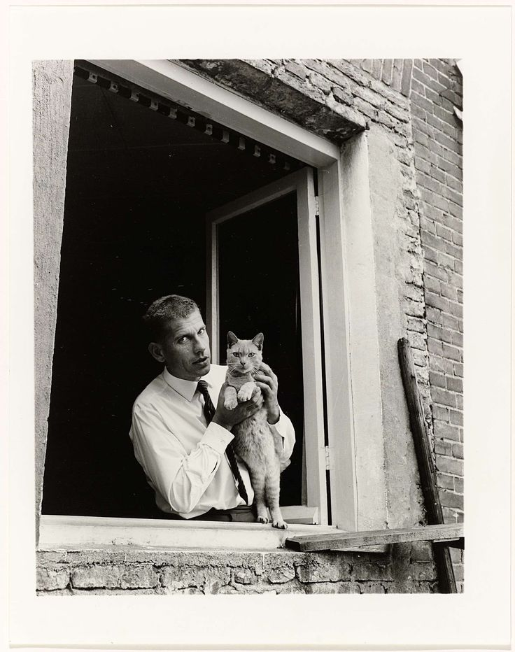 Gerard Reve,Dutch author poses in window,Amsterdam, with cat, Stockings
