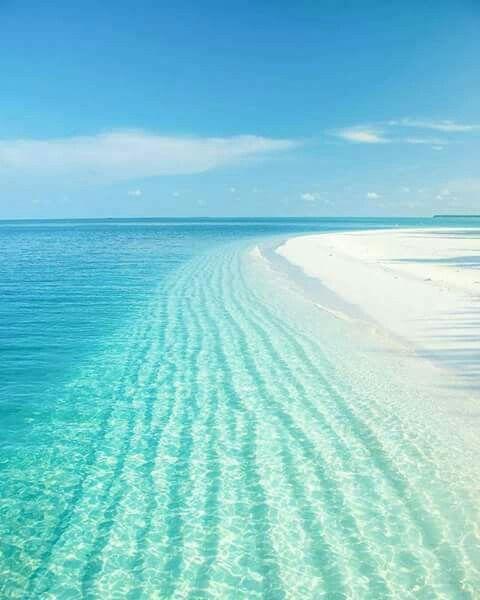 #Meer #strand #beach #urlaub #paradise – BonLauri Kokosöl Kosmetik