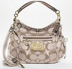 I have this bag! Love it.