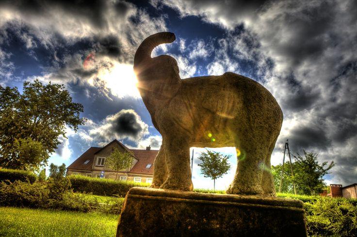 #statue of an #elephant, #Warszewo, #Szczecin
