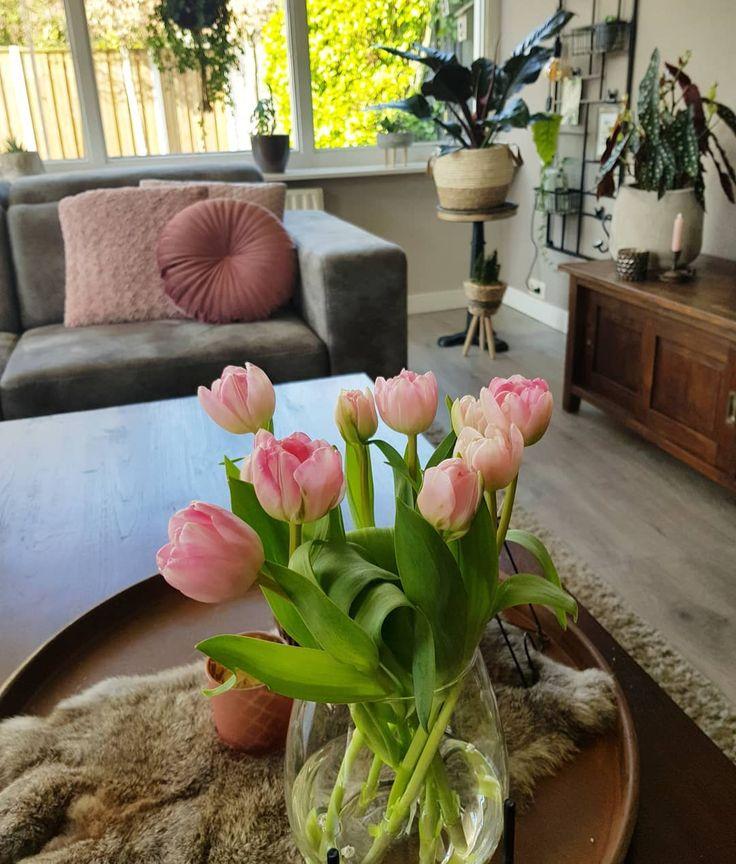 [New] The 10 Best Home Decor (with Pictures) –  ZATERDAG Goedemorgen lieve volge…