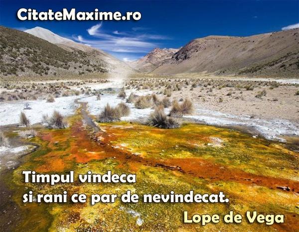 """""""Timpul vindeca si rani ce par de nevindecat."""" #CitatImagine de Lope De Vega Iti place acest #citat? ♥Like♥ si ♥Share♥ cu prietenii tai. #CitateImagini: #SuferintaInDragoste #LopeDeVega #romania #quotes Vezi mai multe #citate pe http://citatemaxime.ro/"""