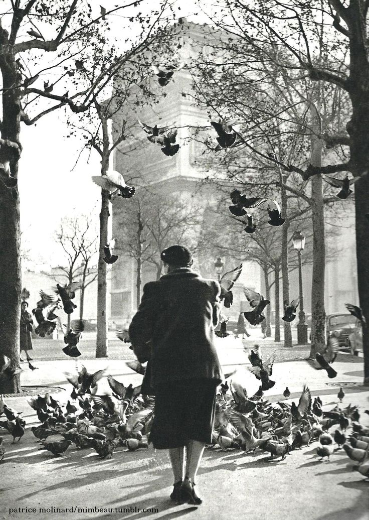 Chamade - Vintage French Photos - Patrice Molinard Paris 1956