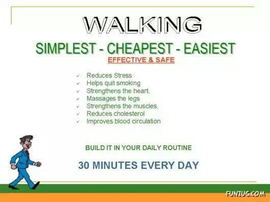 Can You Lose Weight By Walking Your Dog Everyday