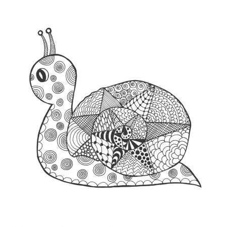 Zentangle stilisierte Schnecke – Stockvektor # Affiliate, #Stylized, #Zentangle, #Snail, #Vector