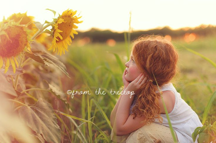 Keep your face to the sunshine and you cannot see the shadow. It's what sunflowers do. – Helen Keller