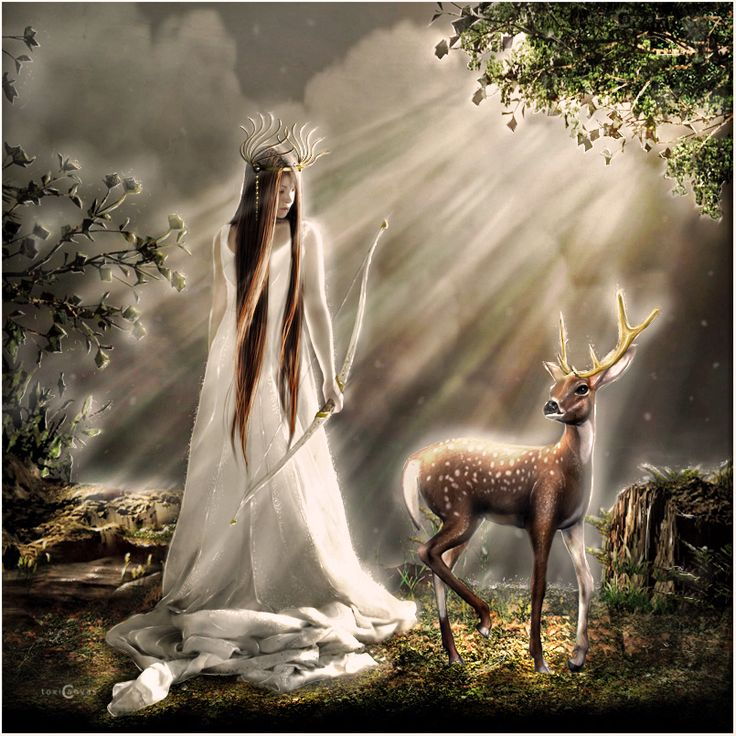 Artemis (Diana), daughter of Zeus and Leto, twin of Apollo. She is the lady of the wild things, huntsman of the gods, protector of the young. Like Apollo she hunts with silver arrows. She's also associated with the moon. She's known as the the virgin goddess and the goddess of chastity. She also presides over childbirth, which goes back to causing Leto no pain when she was born. The cypress is her tree. All wild animals are sacred to her, especially the deer.