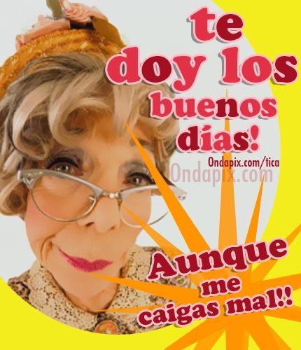 Te doy los buenos días, aunque me caigas mal! #saludos #actitud #humor #BuenosDias #tarjetitas #OndaPix