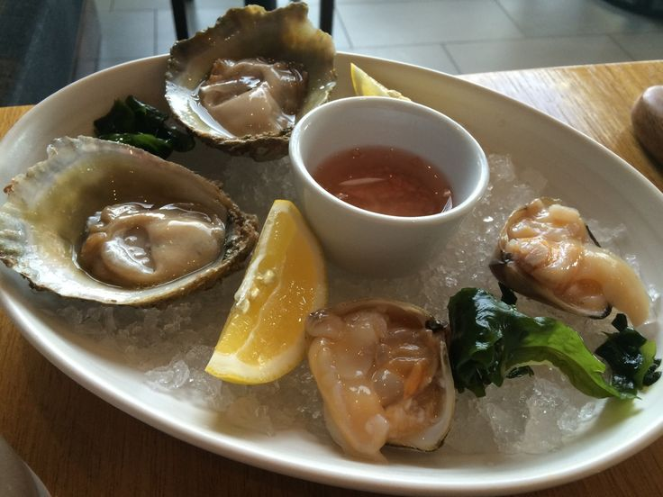 Bluff oysters and clams