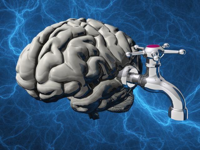 10 Causes of Potentially Reversible Dementia Symptoms: Normal Pressure Hydrocephalus