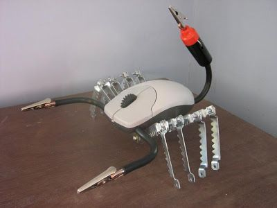 ¿Como reciclar un mouse?
