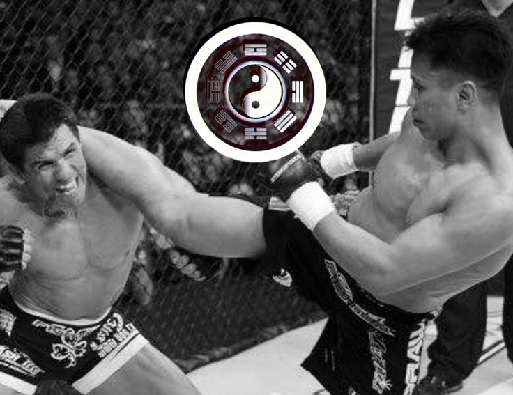 Ginger Ninja Trickster Interview Cung Le, Martial Arts Interview Cung Le, MMA Interview Cung Le, Interview Cung Le, GNT Interview Cung Le, Martial Arts