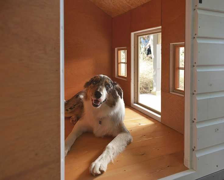 Detalle del interior de la caseta Moritz con las paredes y suelo de madera, sin aristas/ Interior detail with walls and floor without edges, model Moritz.